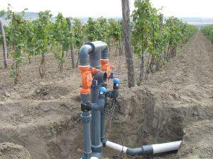 В края на 2012г. завършихме инсталирането на автоматизирана система за капково напояване на 1300 дка. лозов масив в с.Совата